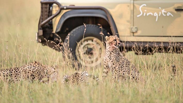 南アフリカ ラグジュアリーサファリロッジ「シンギタ ボルダーズ&レボンボ」5泊8日