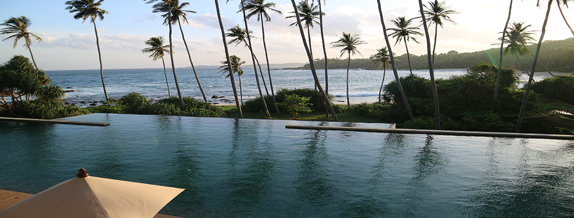"""""""光り輝く島""""スリランカの魅力に触れる"""