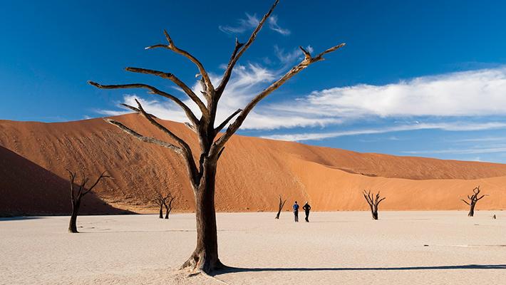 未知への憧れ、ナミビアの旅