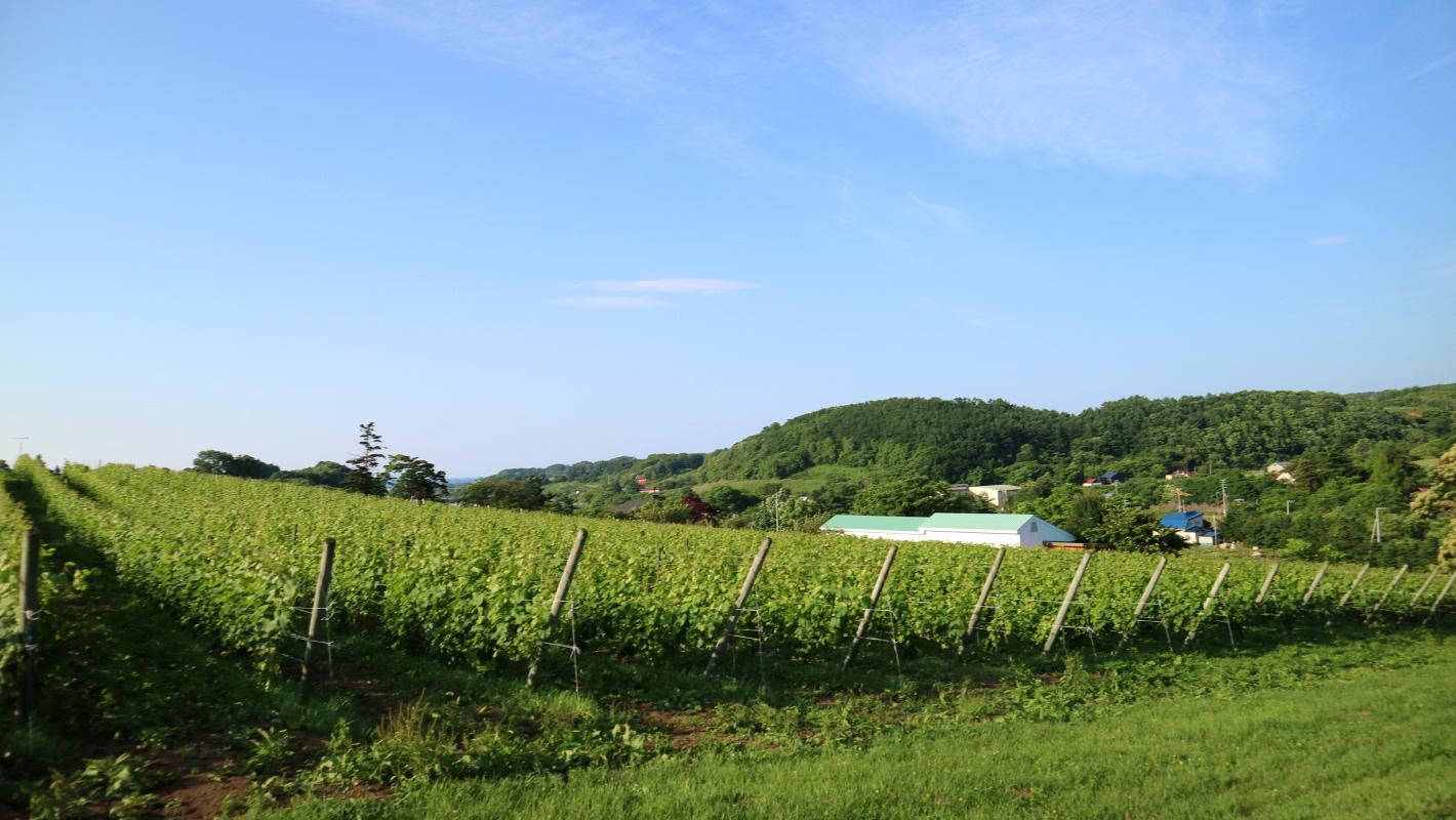 ワインと巡る日本の旅【後編】